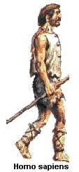 Primata5