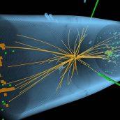 Universo quântico holoinformacional