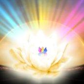 Energia: Frequência, Vibração e… TLDC